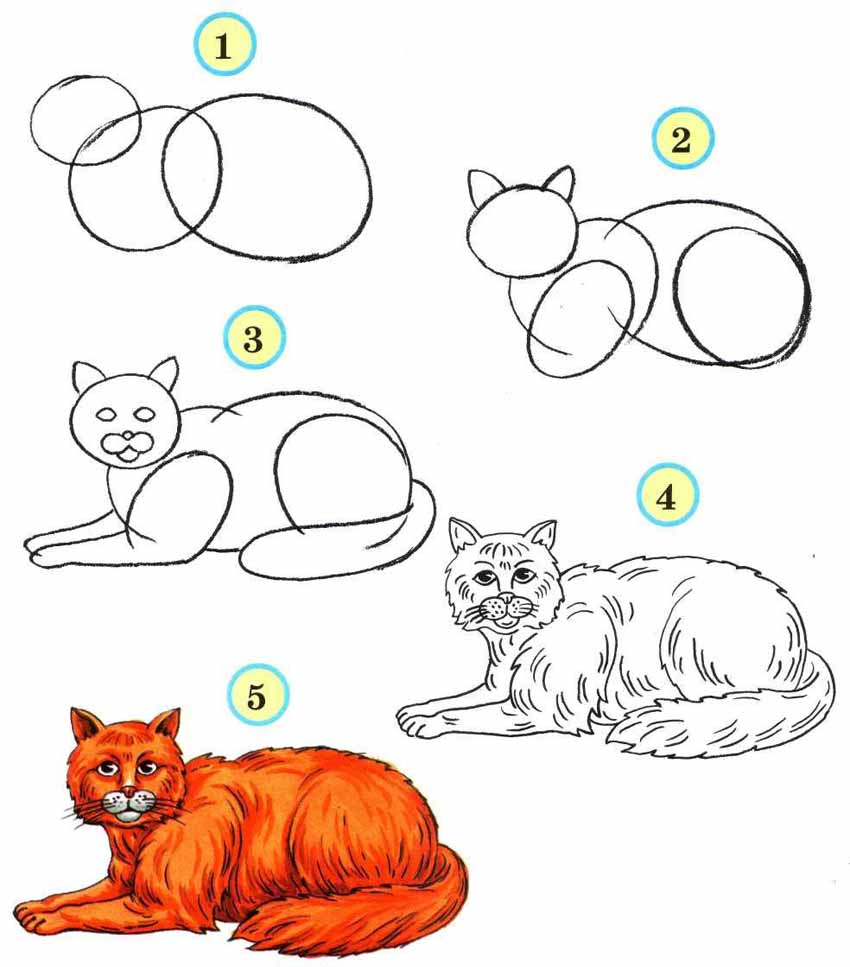 Схемы для рисования для дошкольников