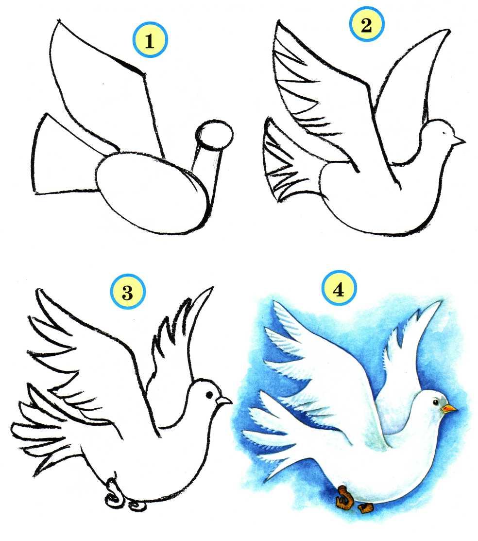 Учимся рисовать птиц - Audioteka.org: audioteka.org/project/uchimsya-risovat-ptic.html