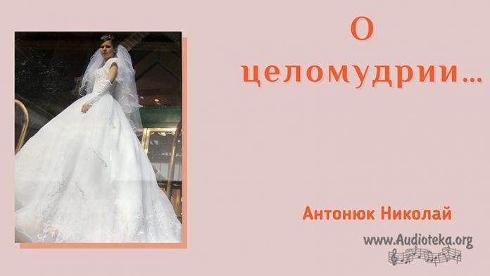 О целомудрии - Николай Антонюк