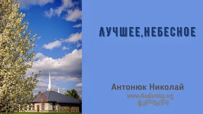 Лучшее, небесное - Николай Антонюк