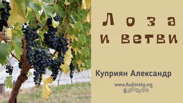 Лоза и ветви - Каприян Александр