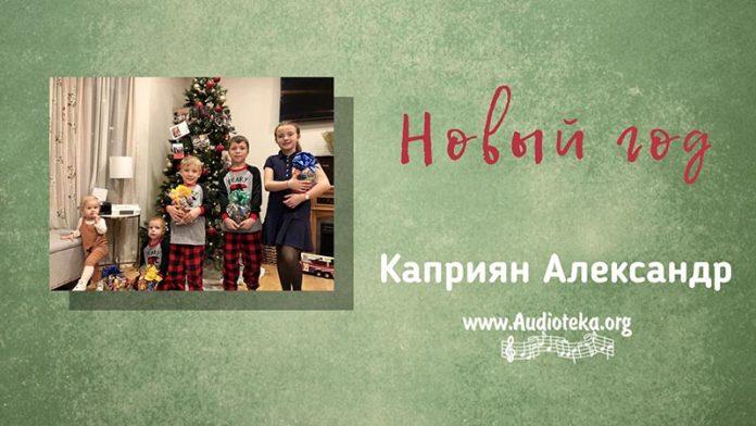 Новый Год - Каприян Александр
