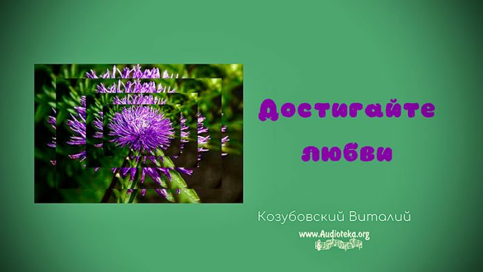 Достигайте любви - Виталий Козубовский