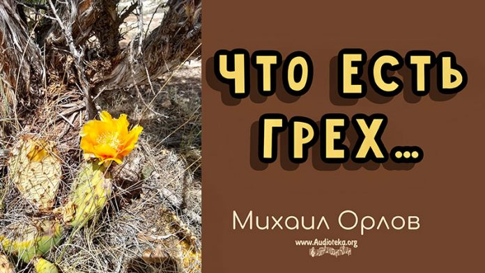 Что есть грех - Михаил Орлов