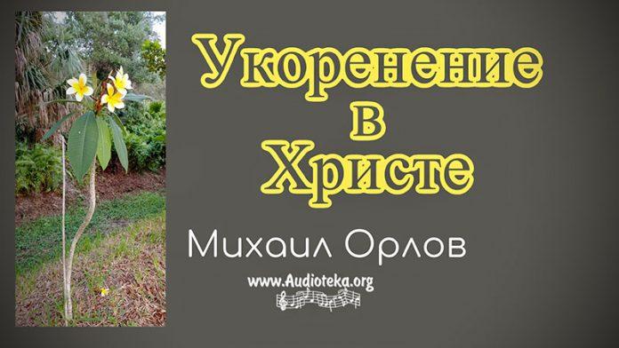 Укоренение в Христе - Михаил Орлов